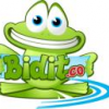 Bidit.co gearing up for Launch from our Pad!!! - last post by Bidit