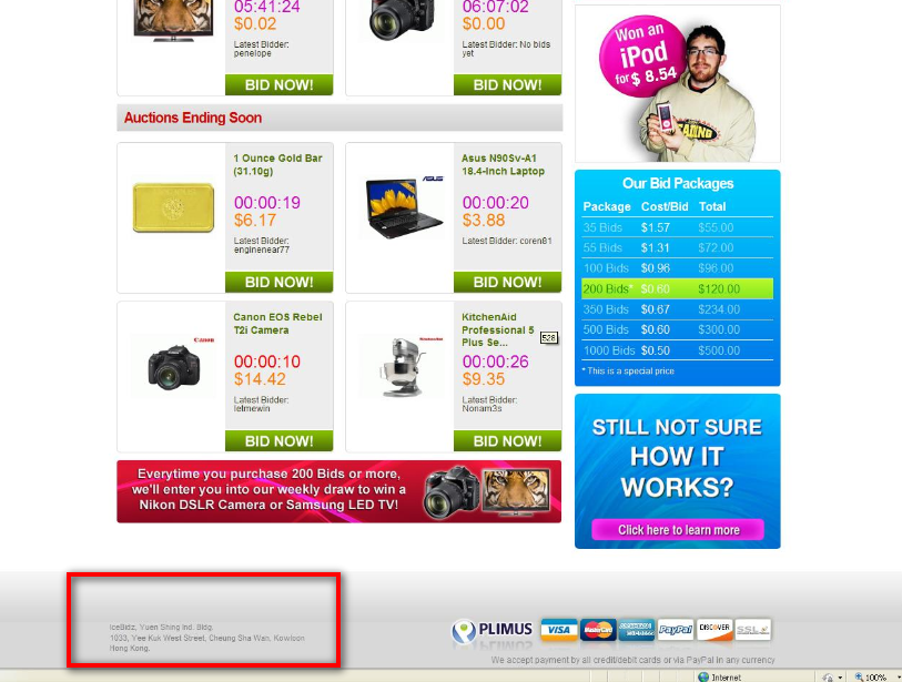hong kong icebidz.com