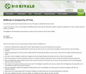 bidrivals.com