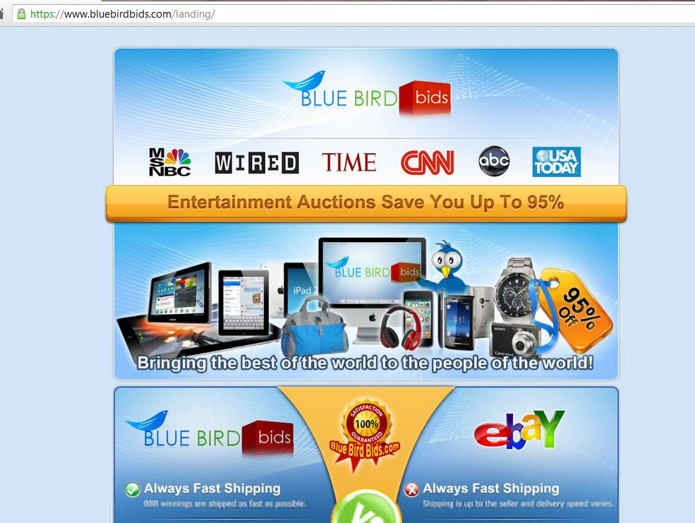 bluebirdbids.com