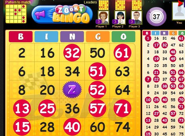 zookt-bingo